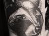 raccoon tatto